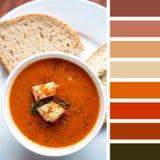 Tavolozza della minestra del pomodoro Fotografie Stock
