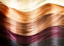 Tavolozza di colori dei capelli Fotografia Stock