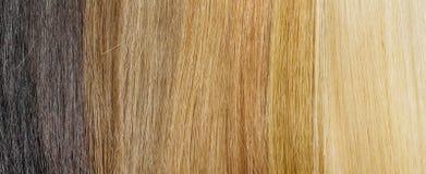 Tavolozza di estensione dei capelli con i campioni di colore dalla bionda da annerire Fotografia Stock