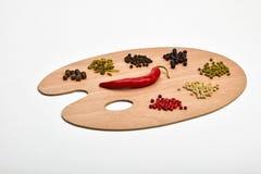 Tavolozza di varie spezie sulla tavolozza di legno isolata su bianco Fotografia Stock