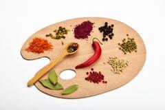 Tavolozza di varie spezie sulla tavolozza di legno su bianco Fotografie Stock Libere da Diritti