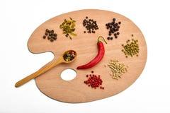 Tavolozza di varie spezie sulla tavolozza di legno su bianco Immagini Stock Libere da Diritti
