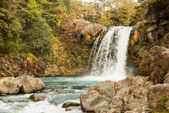 Tawhai Falls. Tongariro National Park, North Island, New Zealand stock images