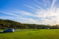 Tawharanui地方公园 免版税库存图片