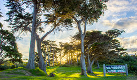 Tawharanui regional park. The Tawharanui regional park is the best place to watching sunrise and enjoy family day. The regional park is at the north of Auckland Stock Photography