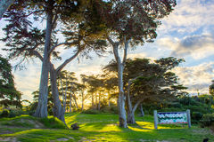 Tawharanui regional park. The Tawharanui regional park is the best place to watching sunrise and enjoy family day. The regional park is at the north of Auckland Stock Image