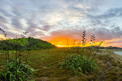 Tawharanui regional park. The Tawharanui regional park is the best place to watching sunrise and enjoy family day. The regional park is at the north of Auckland Royalty Free Stock Photography