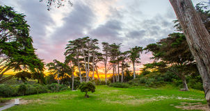 Tawharanui regional park. The Tawharanui regional park is the best place to watching sunrise and enjoy family day. The regional park is at the north of Auckland Stock Photo