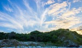 Tawharanui regionalności park Obraz Stock