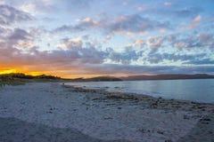 Tawharanui regionalności park Zdjęcia Royalty Free