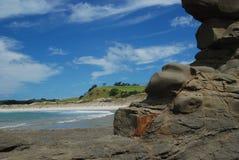 Tawharanui strand Royaltyfria Bilder