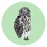 Tawny sowy ilustracja, śliczny zmieszany czarny i biały ptak royalty ilustracja