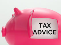 Tax Advice Piggy Bank Shows Advising About Taxes Stock Image