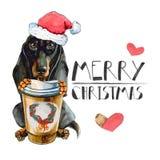 Taxhund i den Santa Claus Christmas hatten, med en värmekopp kaffe bakgrund isolerad white vektor illustrationer