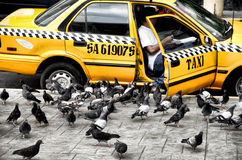 Taxi Cabs Stock Photo