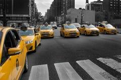 Taxi cabs. New York City taxi cabs stock photos