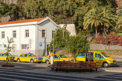 Taxi cars of various types waiting for clients. FUNCHAL, MADEIRA, PORTUGAL - NOVEMBER 3 2011: Taxi cars of various types waiting for clients on a street of Royalty Free Stock Photo