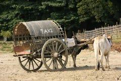 Taxi de touristes dans Mingun, Mandalay, Myanmar Images stock