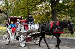Taxi del caballo del Central Park fotografía de archivo