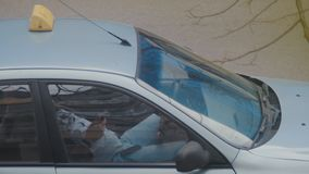 Taxi driver resting in his parked car while checking his mobile phone in hand. Most orders are received from the dispatcher. Through applications or calls in stock video footage