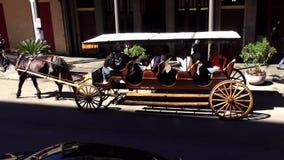 Taxi traído por caballo en la calle New Orleans Luisiana de Decatur metrajes
