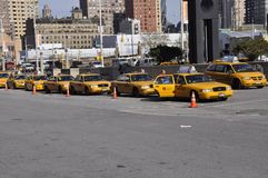 Taxicabs waiting for customers royalty free stock photo