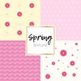 Taxtue semplice della primavera Immagini Stock Libere da Diritti