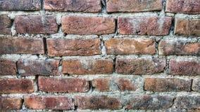 Taxture de la pared Imagen de archivo libre de regalías