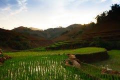 TaXua, Sonla, Vietnam lizenzfreie stockbilder
