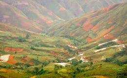 TaXua Sonla, Vietnam Fotografering för Bildbyråer