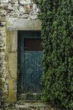 Taxus has taken possession of historic building. By not using the building for decades, nature has taken possession of it royalty free stock images