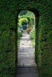 Taxushoutboog, Engelse tuin Stock Afbeeldingen