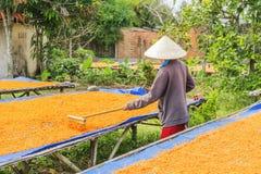 Tay Ninh Chili Shrimp Salt (Muoi Tom), provincia di Tay Ninh, Vietnam Fotografie Stock Libere da Diritti