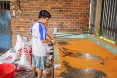 Tay Ninh Chili Shrimp Salt (Muoi Tom), Tay Ninh province, Vietnam Stock Images