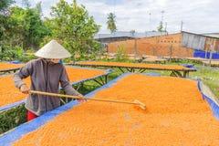 Tay Ninh Chili Shrimp Salt ( Muoi Tom ), Tay Ninh province, Vietnam Royalty Free Stock Image
