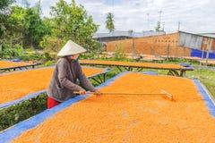 Tay Ninh Chili Shrimp Salt (Muoi Tom), Tay Ninh province, Vietnam Royalty Free Stock Photos