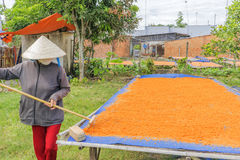 Tay Ninh Chili Shrimp Salt (Muoi Tom), Tay Ninh-provincie, Vietnam Royalty-vrije Stock Foto's