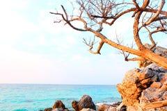 TaYaii海滩的天空 免版税库存图片