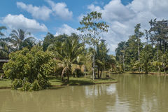 Tayland.Park around a tropical lake. Stock Photos