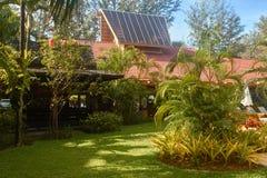 Tayland Parque de Tropichesky cercado por árvores Fotos de Stock Royalty Free