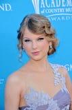 Taylor стремительный Стоковое фото RF
