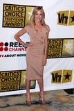 Taylor Armstrong Royalty Free Stock Image