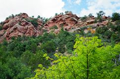 Taylor Creek, Kolob-Canions, Zion National Park, Utah stock fotografie
