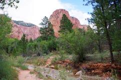 Free Taylor Creek, Kolob Canyons, Zion National Park, Utah Royalty Free Stock Image - 98313926