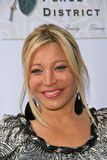 Taylor Dayne Royalty Free Stock Photos