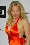 Taylor Dayne Royalty Free Stock Images
