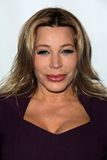 Taylor Dayne Royalty Free Stock Photography