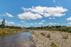 Taylor-Fluss in Blenheim, Neuseeland Lizenzfreie Stockfotografie