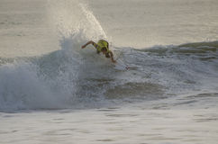 Taylor Knox Royalty Free Stock Images