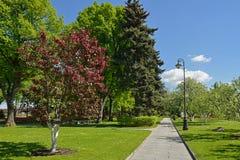 Taynitsky庭院是在克里姆林宫内墙壁的都市公园位于俄罗斯 库存图片
